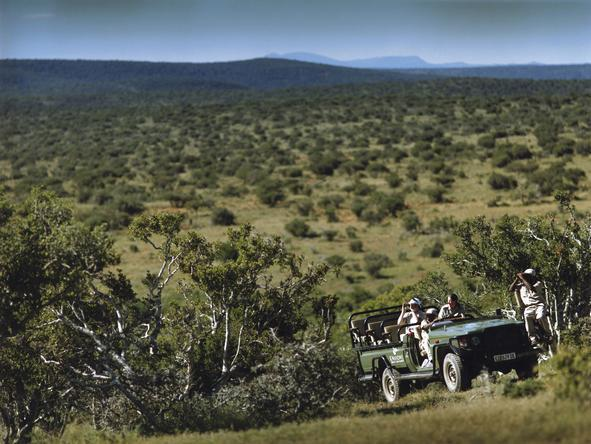 Eastern Cape Frontier Safari