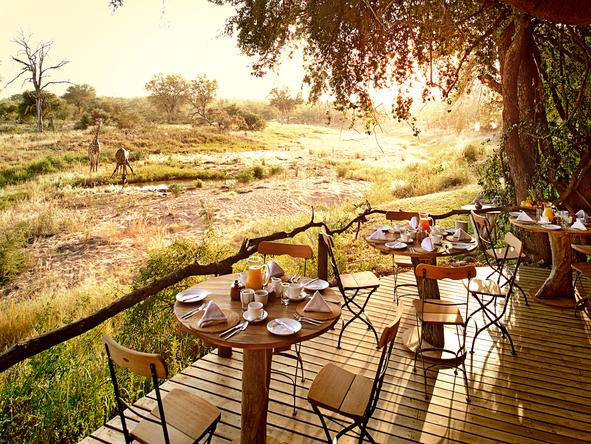 Cape To Kruger for Wine & Art Connoisseurs
