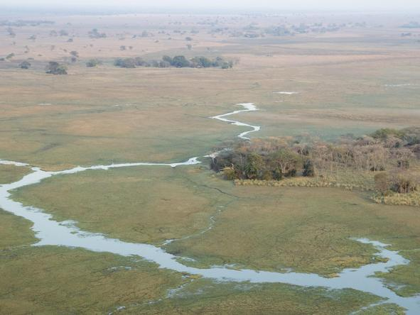 Busanga Bush Camp - aerial view of plains