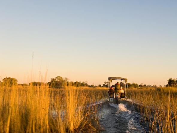 Camp Okavango - water safari