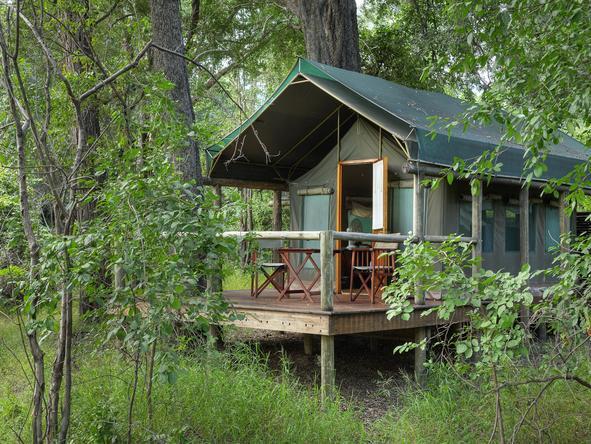 Camp Moremi - tent exterior