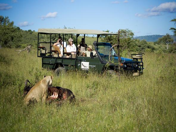 Klein's Camp - game drive