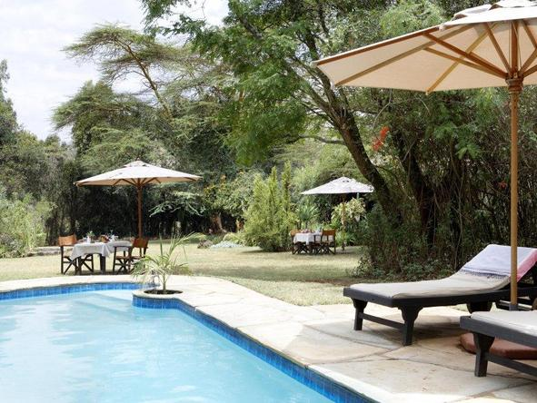 Ngong House - pool