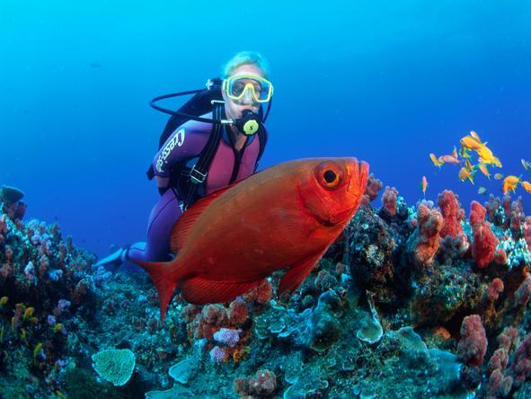 Thonga Beach Lodge - scuba dive