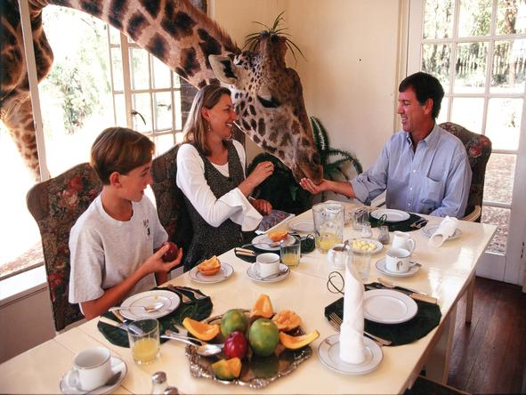 The Giraffe Manor - breakfast