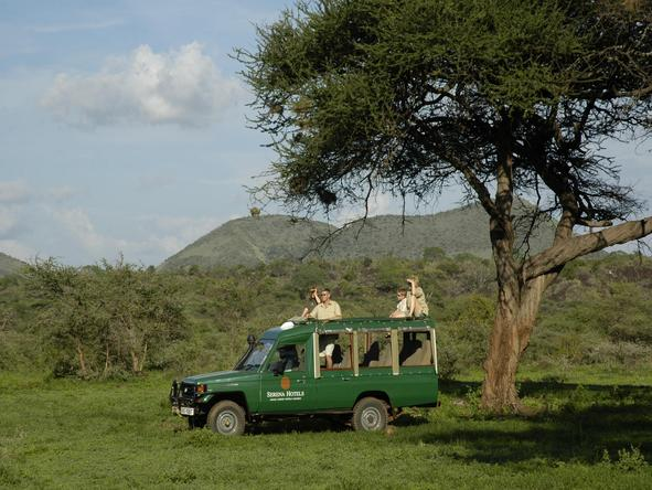 Kilaguni Serena Safari Lodge - game drive