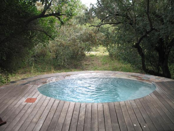 Tintswalo Safari Lodge - plunge pool