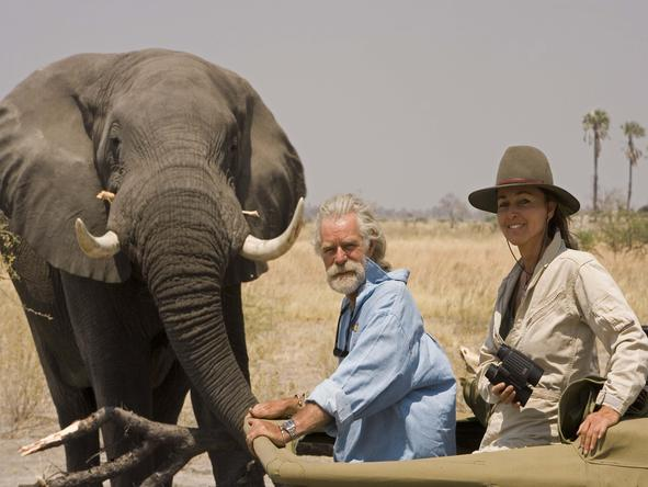 Selinda Camp - game drive + elephant