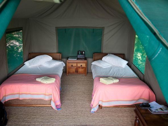 Mumbo Island Camp - tent