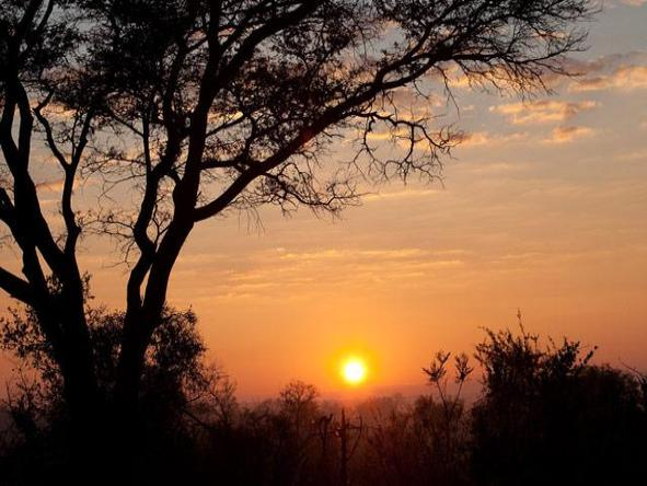 Londolozi Pioneer Camp - sunset