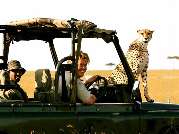 Richard's Camp - game drive + cheetah