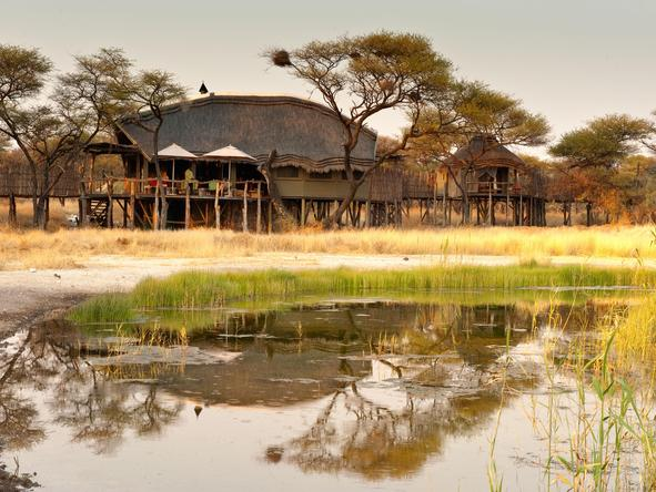 Onguma Tree-Top Camp - lodge exterior + waterhole