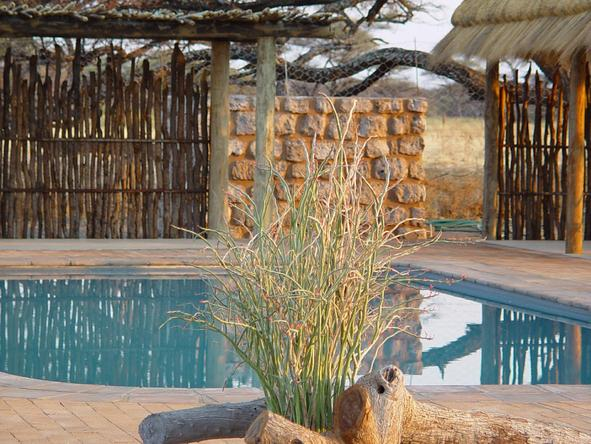 Onguma Bush Camp - pool patio
