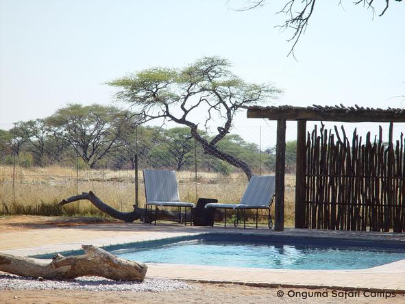 Onguma Bush Camp - swimming pool