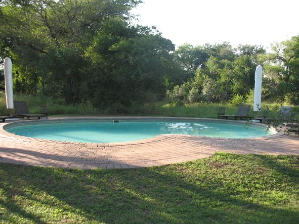 Honeyguide Khoka Moya Safari Lodge - Pool