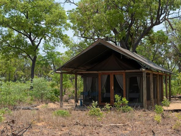 Davison's Camp - tent exterior
