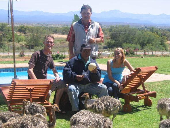 Mooiplaas Guest House - learning about the ostriches