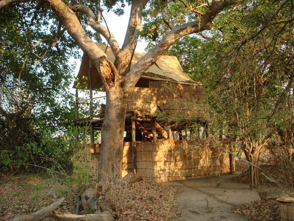 Chikoko Tree Camp - landscape