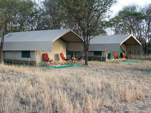 Serengeti Tented Camp - twin tents