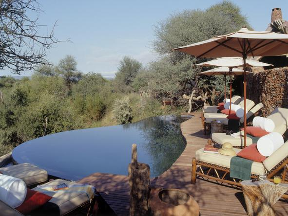 Makanyane Safari Lodge - swimming pool deck