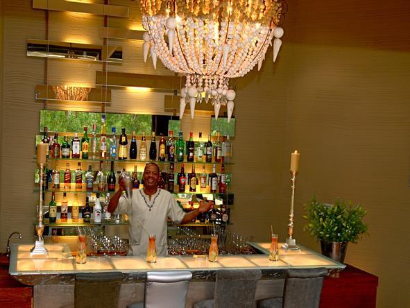 Tsala Treetop Lodge - Bar