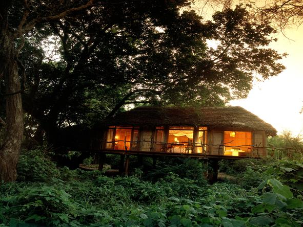 Lake Manyara Tree Lodge - Accommodation