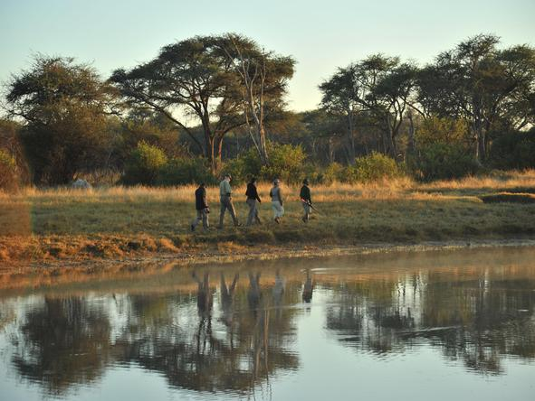 The Hide - walking safari in Hwange