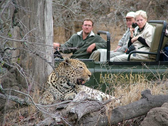 Lion Sands River Lodge - Game Drive 2