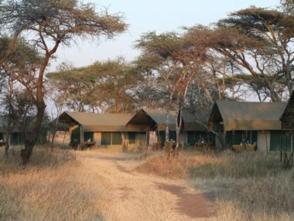 Serengeti Kati Kati Camp - Camp