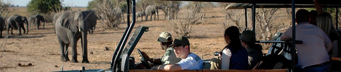 Chobe & Savute Luxury Mobile Safari
