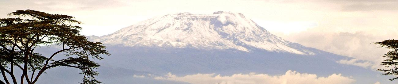 Kilimanjaro - the highest mountain in Africa lends an impressive backdrop to a safari in nearby Amboseli National Park.