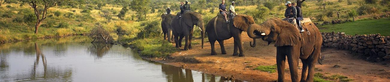 Fun-Filled Sun City & Malaria Free Safari