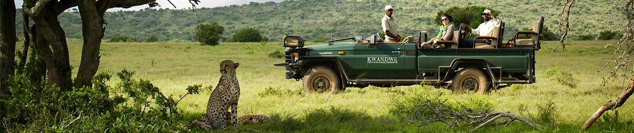Magnificent Eastern Cape Safari