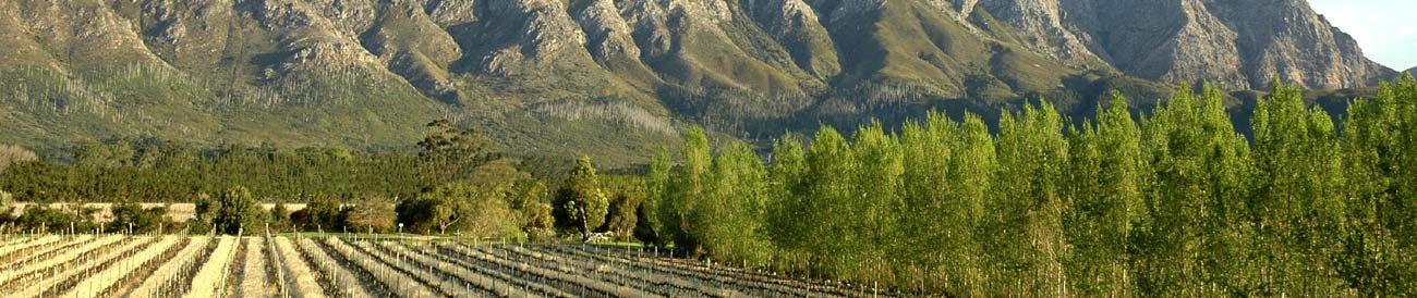 Romantic Cape Town & Winelands Explorer