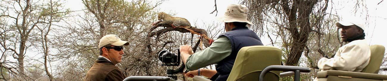 Londolozi - a private Big 5 game reserve known for phenomenal leopard sightings.