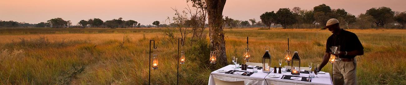 Luxury Okavango Delta Fly-In Honeymoon Safari