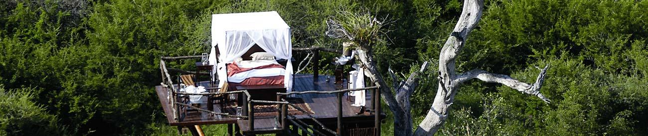 Lion Sands - a family-owned and managed Sabi Sands reserve with three luxurious lodges and a unique tree house for a night out under the stars.