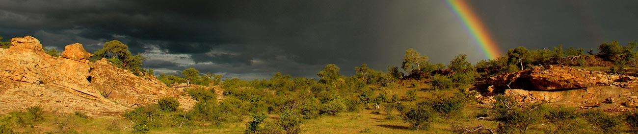 Tuli Block - tucked away in the remote south-eastern corner of Botswana, the Tuli Block offers spectacular, game-filled landscapes dotted with baobabs and rocky outcrops.