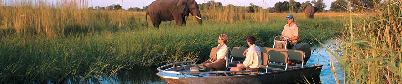 Chobe River - offering some of the best boat and land-based game viewing in Africa, a dry-season Chobe River safari is always richly rewarding.