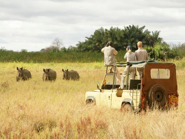 Adamson's Footsteps Kenya Explorer