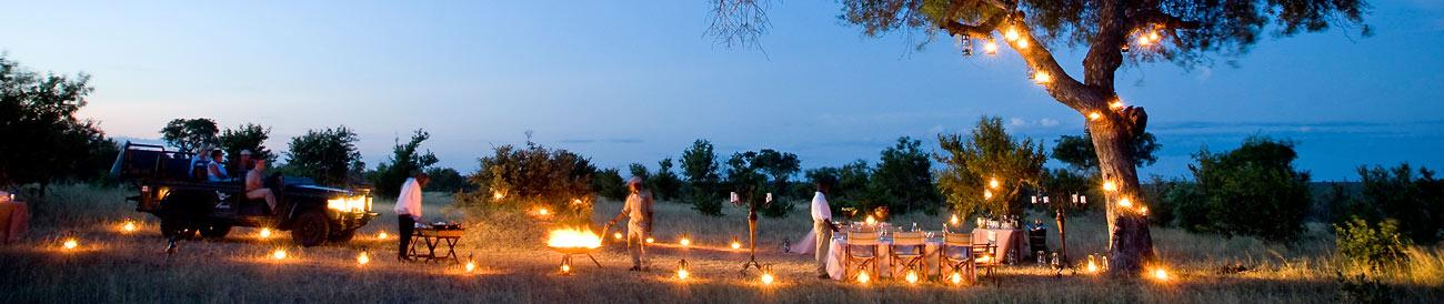 Luxury Kruger and Phinda Safari