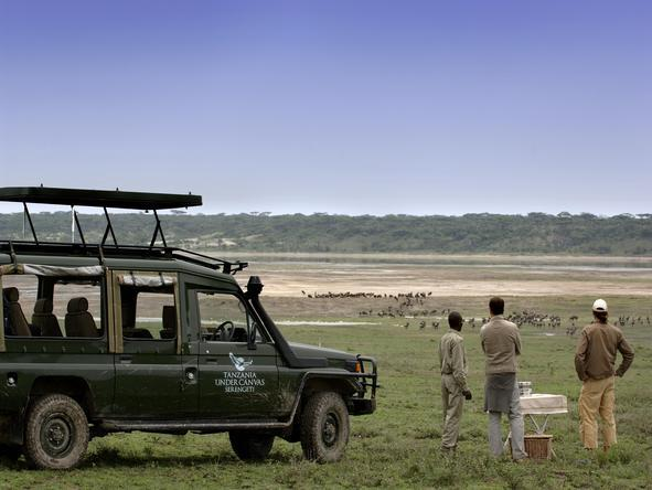 Serengeti Under Canvas - Game Drive
