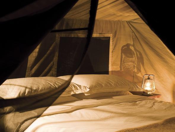 Chobe Under Canvas - tent exterior at night