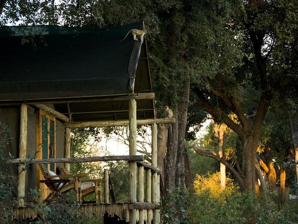 Duba Plains Camp - private deck