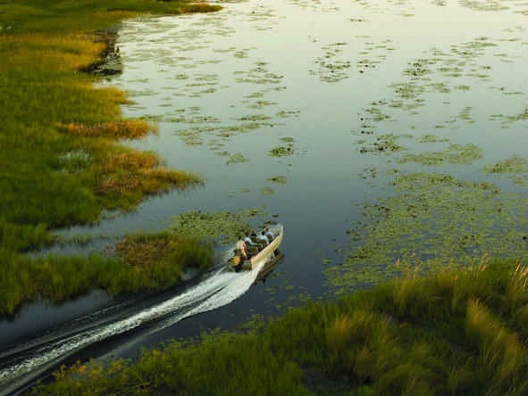 Eagle Island Camp - boat excursions in the Delta