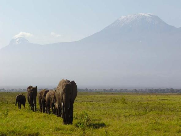 Classic Kenya Adventure Safari