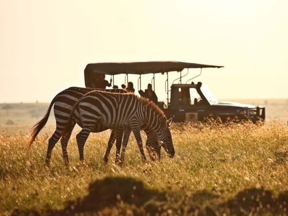 Romantic Kenya Wildlife Safari