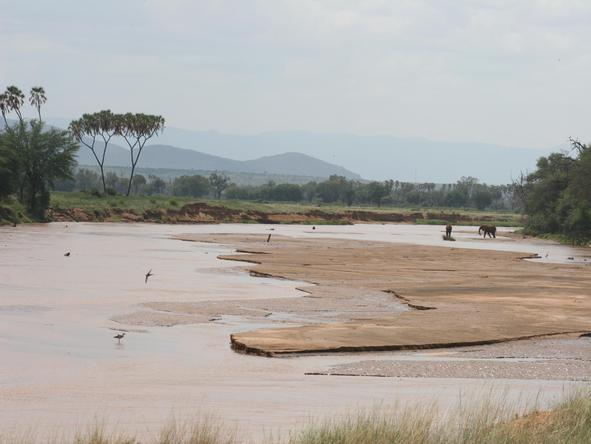 Discover Kenya Wilderness Journey