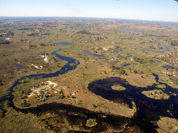 An Okavango Expedition