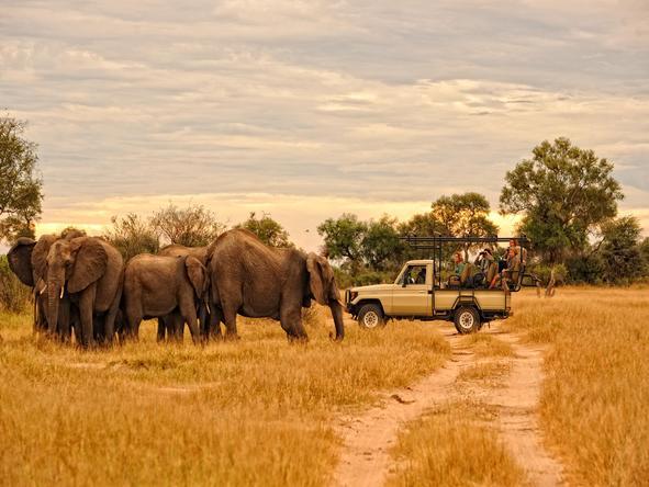 Zambezi River Odyssey